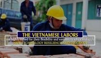 越南建築工人出口到中東:所有職位的平均勞動生產率