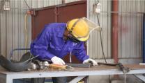 نظمت شركة Vietnam Manpower الحملة الثانية لتوظيف عمال في شركة S&F في رومانيا