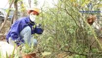 Vietnam Manpower-LMK Vietnam., JSC Company has provided more than 55 employees for a farm company in Romania.