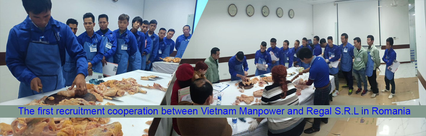 The first recruitment cooperation between Vietnam Manpower and Regal S.R.L in Romania