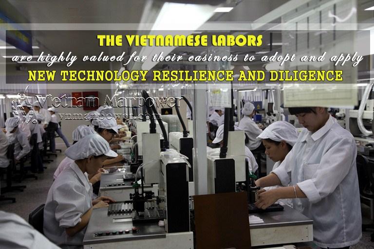 vietnamese-traits