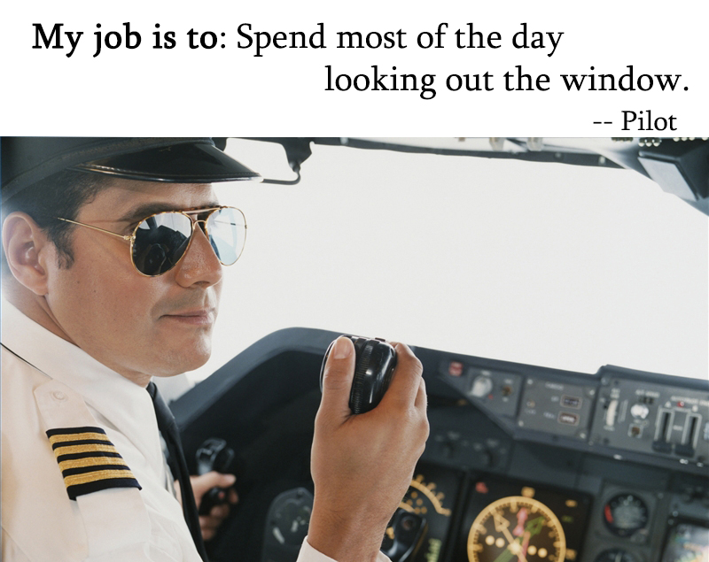 i wanna be a pilot essay